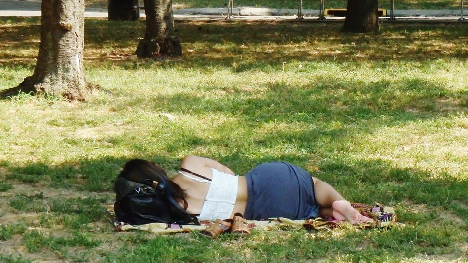 Lovely sight in the park. Pretty wonan napping on the lawn under the shade of a tree. Pretty Girl Cat Napping Stayintheshade Morefuninthepark