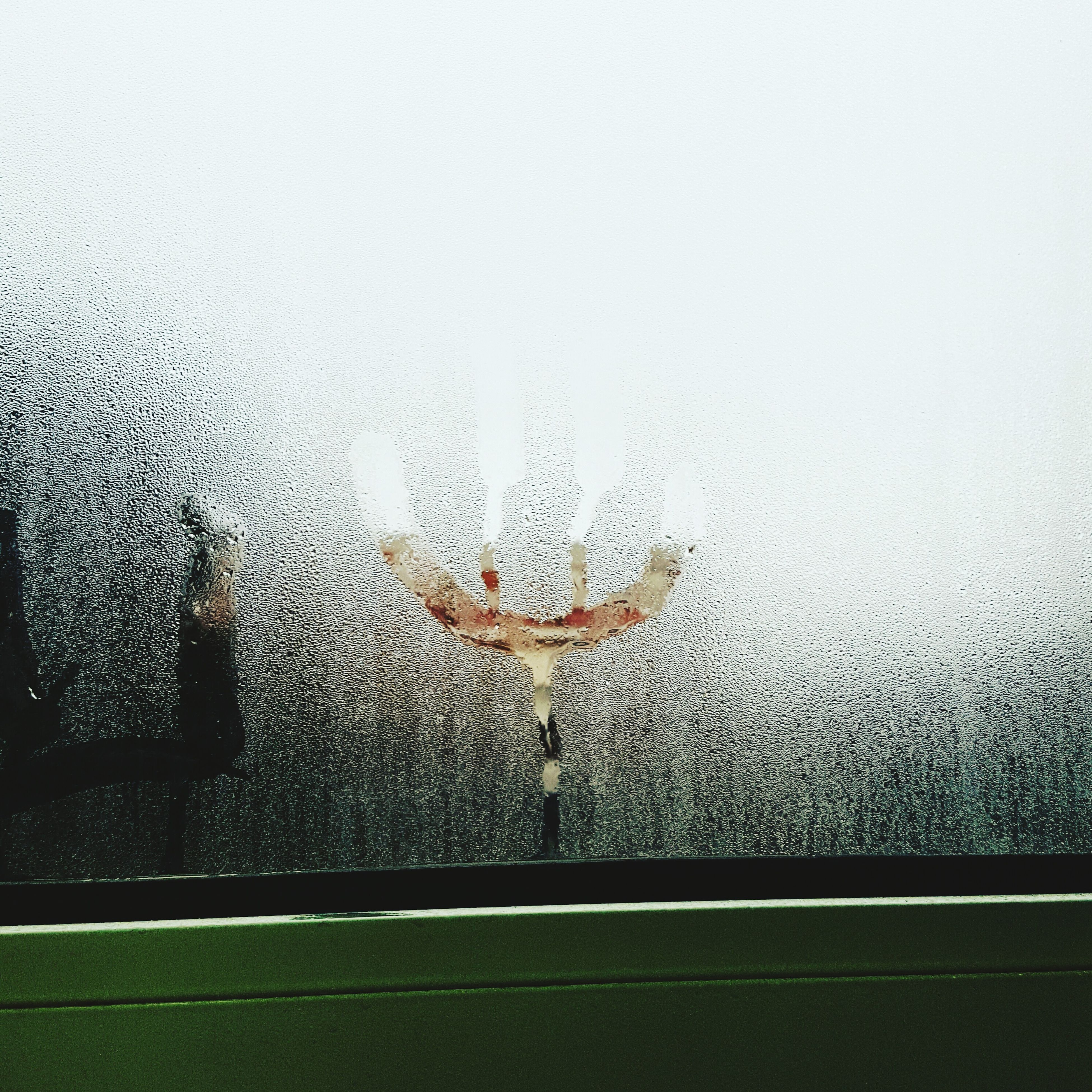 window, water, glass - material, transparent, drop, wet, indoors, animal themes, rain, glass, animals in the wild, season, one animal, wildlife, close-up, raindrop, weather, insect, transportation, nature