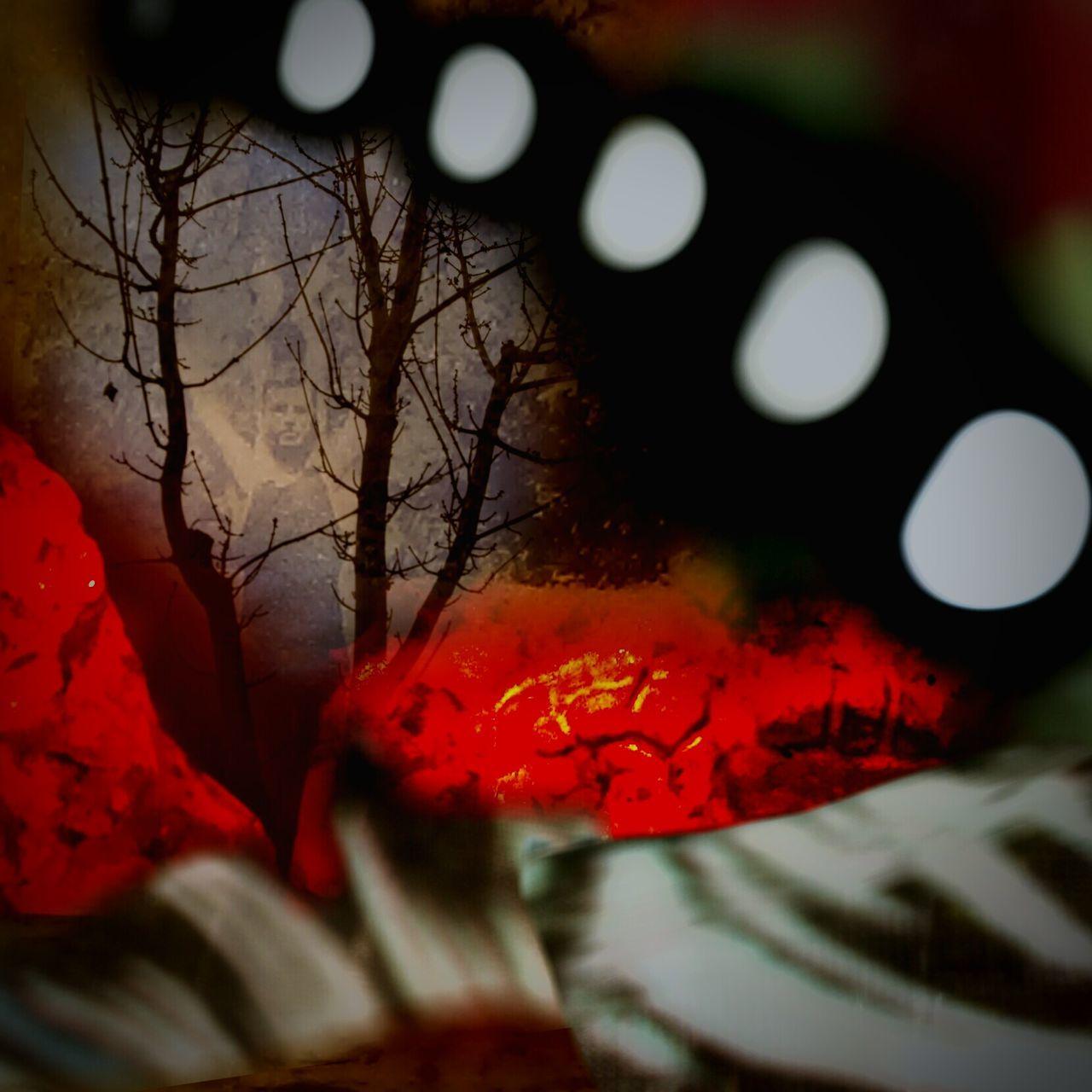 Tree Ember Love Ember Of Love Ember Lover Moonlight Moon