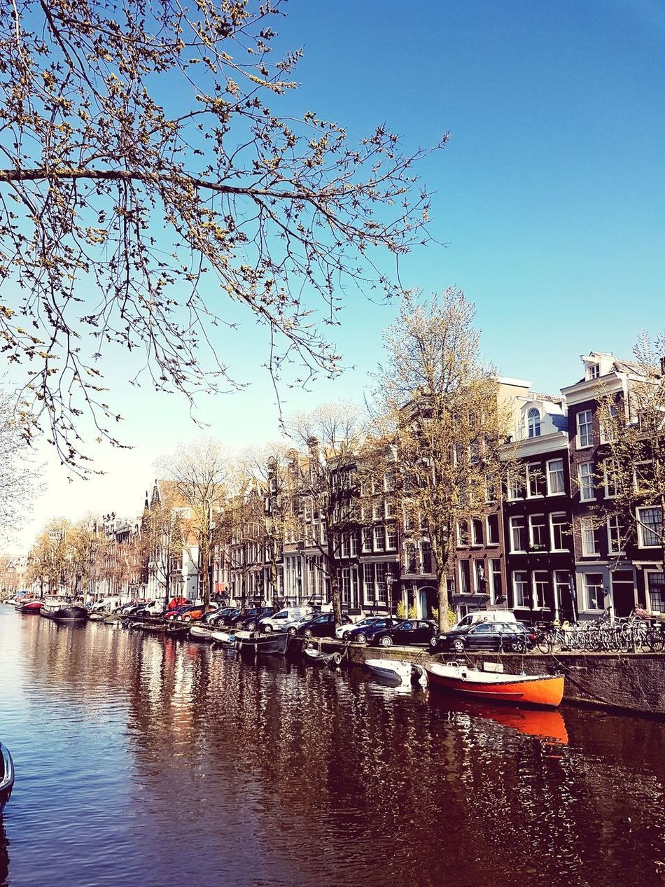 Amsterdam, 27th of March 2017 Water Sky Mode Of Transport Transportation Blue Tree Outdoorsc Canal Buildings No People Day Architecture Cloud - Sky Nature Amsterdam Jordaan
