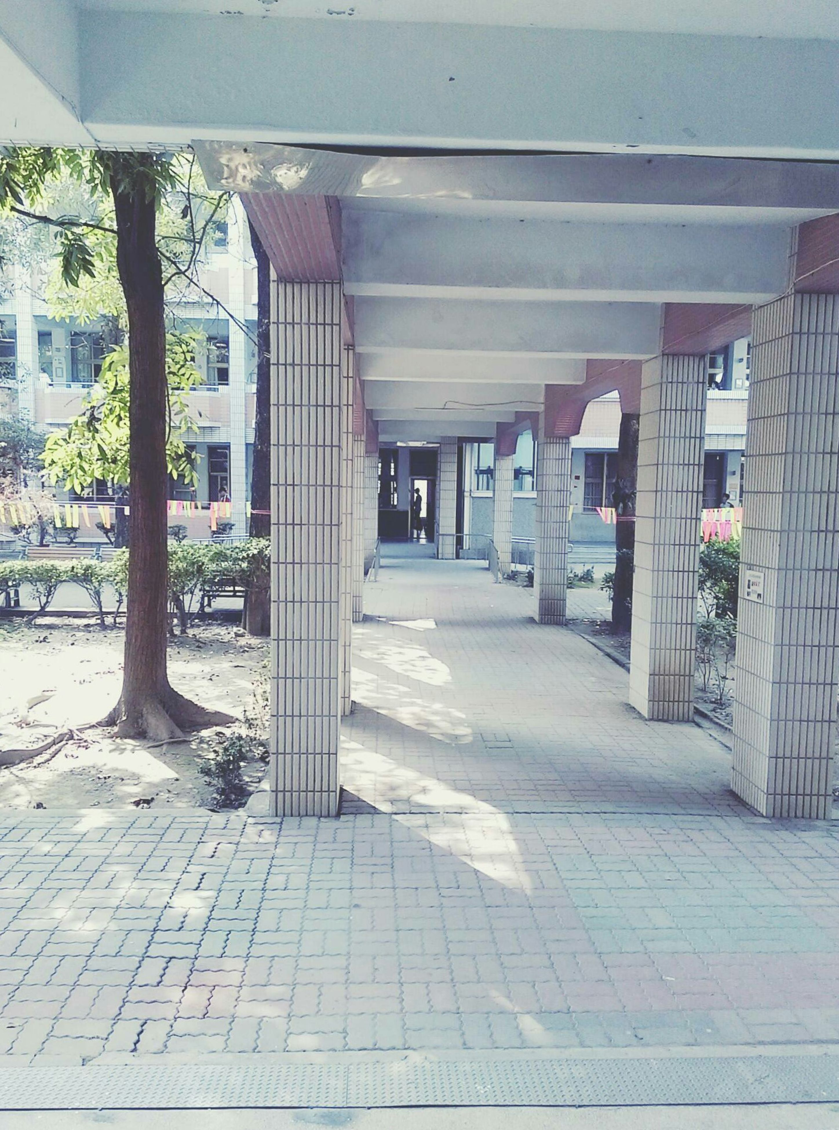 built structure, architecture, building exterior, architectural column, column, corridor, pillar, colonnade, day, the way forward, long, no people