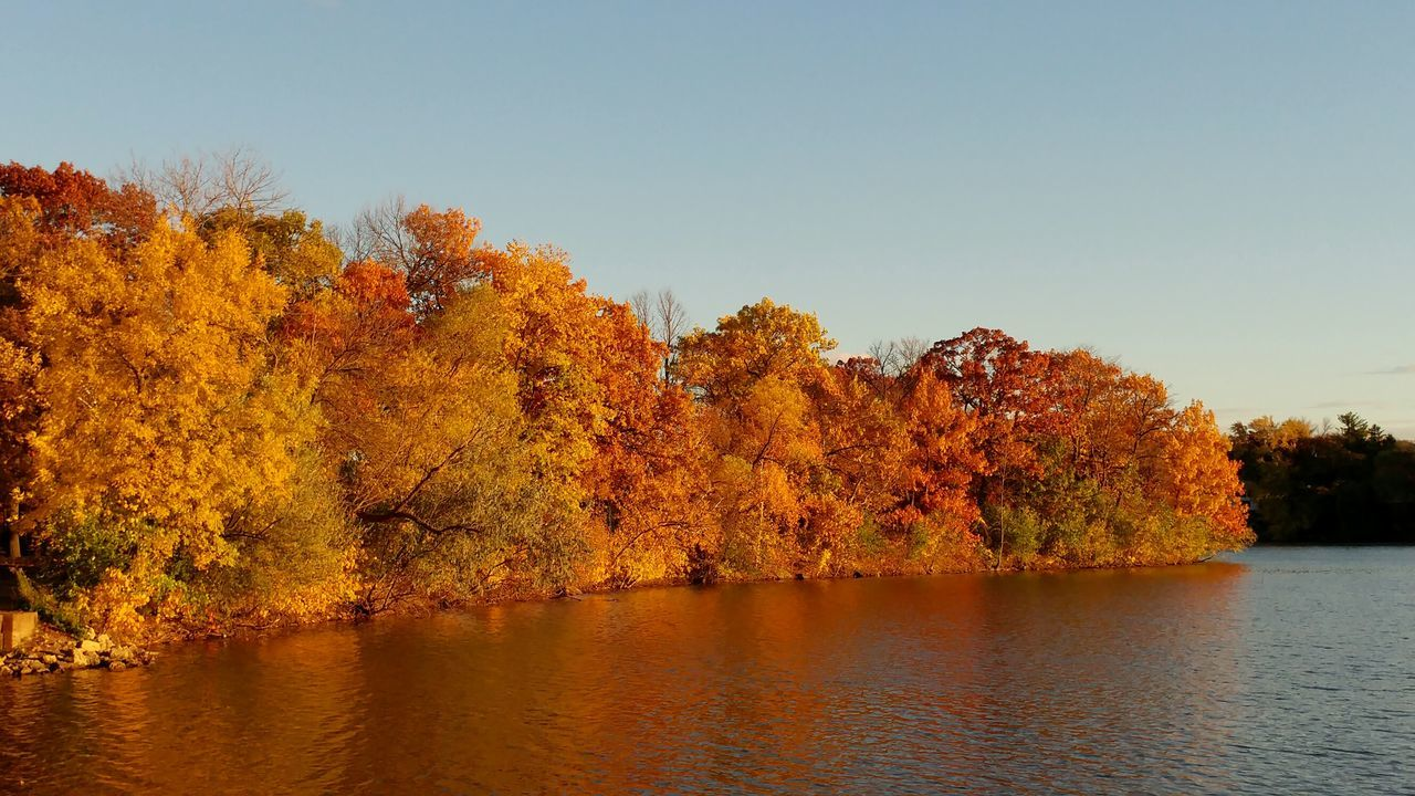 It has been the most beautiful fall here in Minnesota. Often the weather has already turned cold so fast we don't get much time outside to enjoy it. This fall has been sunny, warm, and beautiful! Fall2016 Fall Beauty Orange Leaves Colorful Nature Colorful Life Minnesota Tree Nature Lake Beauty In Nature Water Reflection Sunset Tree Nature Outdoors No People Tranquility Lake Sky Day Beauty In Nature Minneapolis
