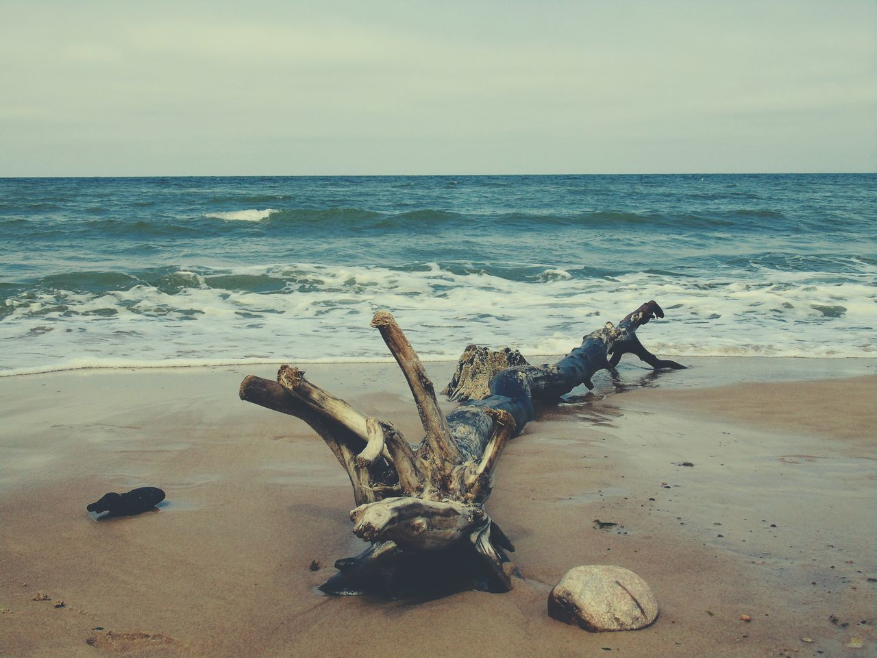 Beachphotography Beach Wood Water Sea Sand