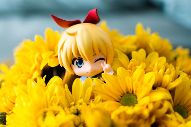 Flower surprise! Toyphotography Nendoroid Figurephotography Goodsmilecompany Nendophotography Animefigure ChitogeKirisaki