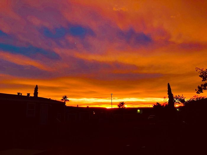 Blazing Skies Sunset Silhouette Orange Color Sky Cloud - Sky Nature Shades Of Winter Dramatic Sky Outdoors Beauty In Nature No People Scenics