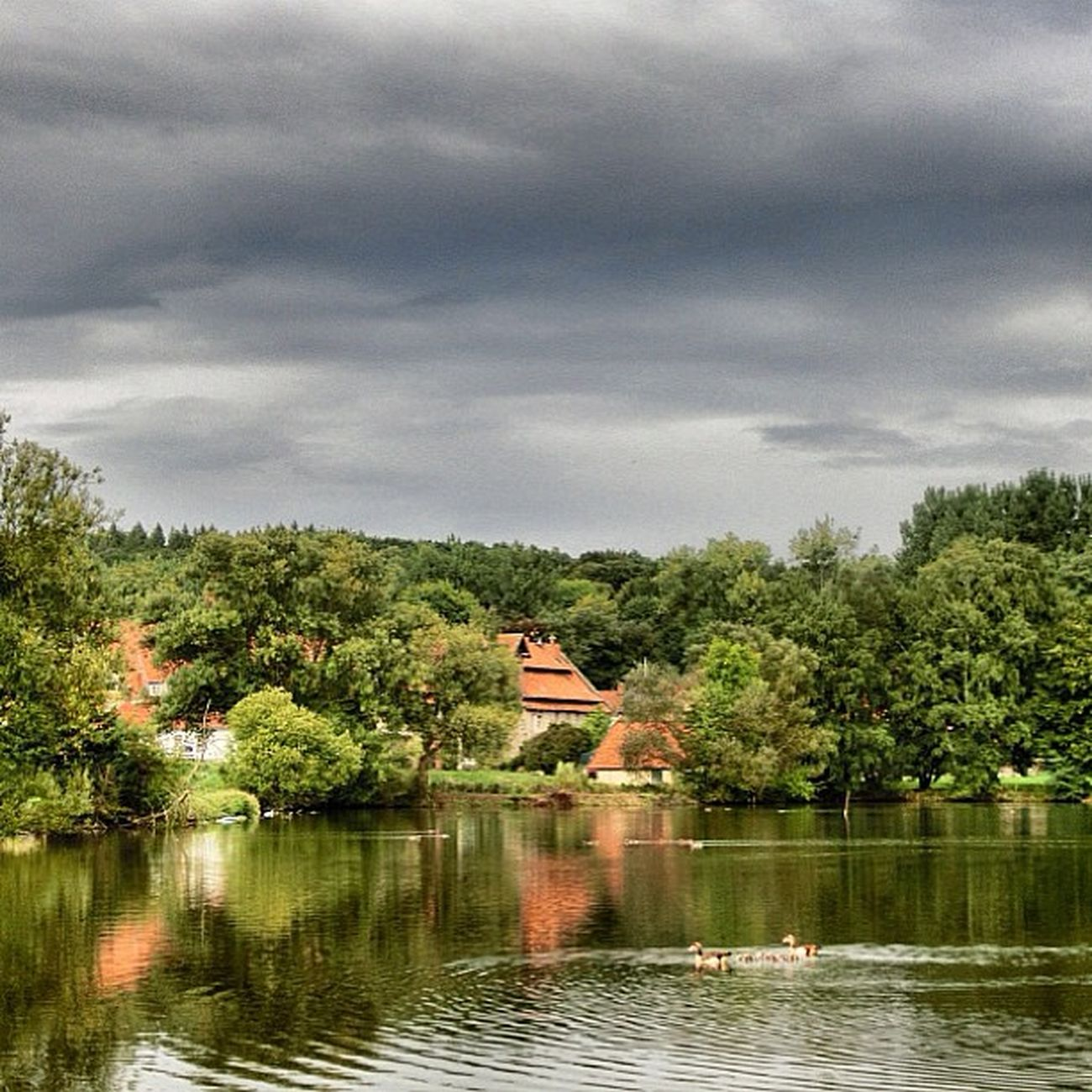 Sklblog Astenbeck