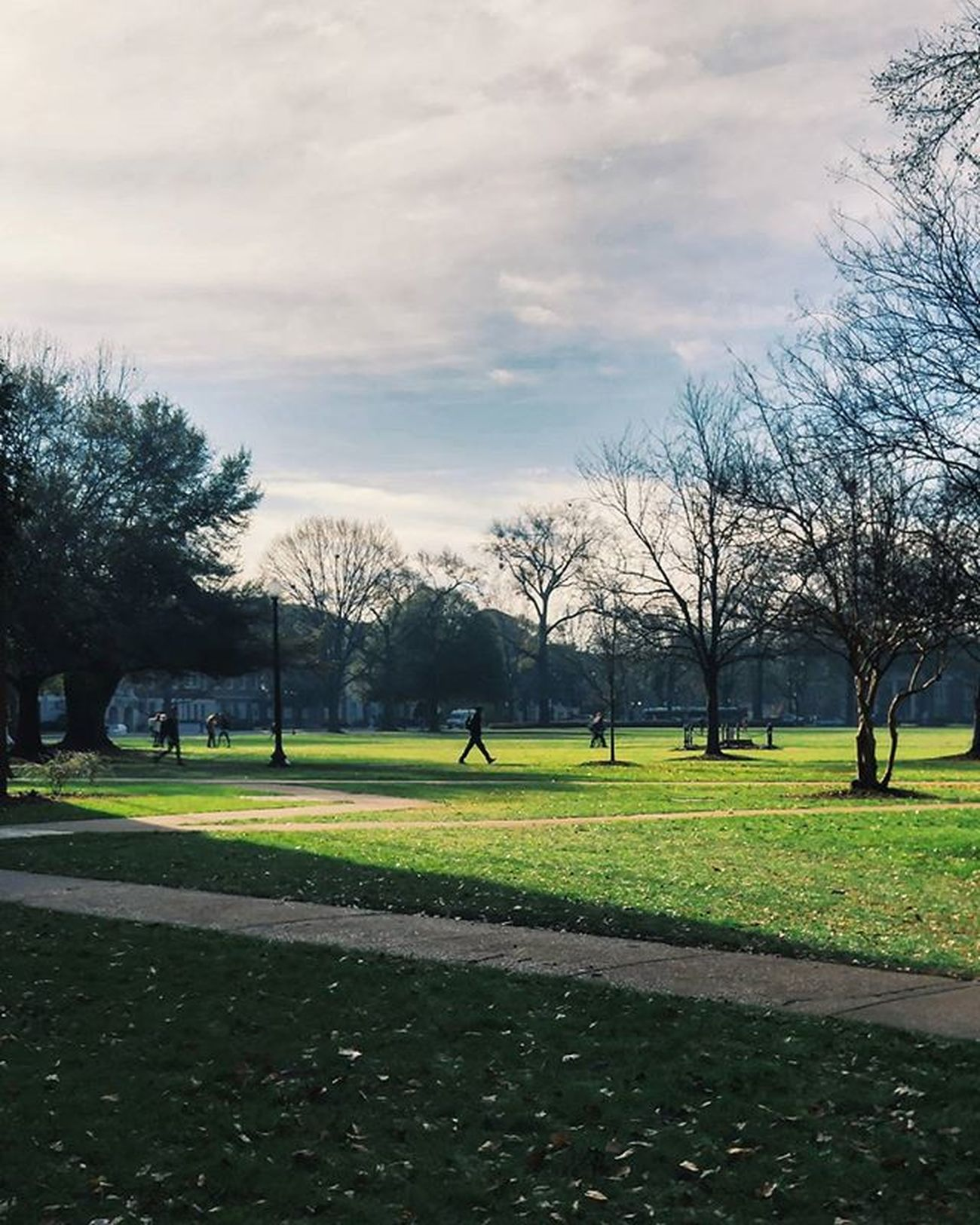 GET TO CLASS UA College South Sec Nationalchampions2016 Yourcollegetown @yourcollegetown Landscape Thequad Al VSCO Vscocam Tinypeopleinbigplaces
