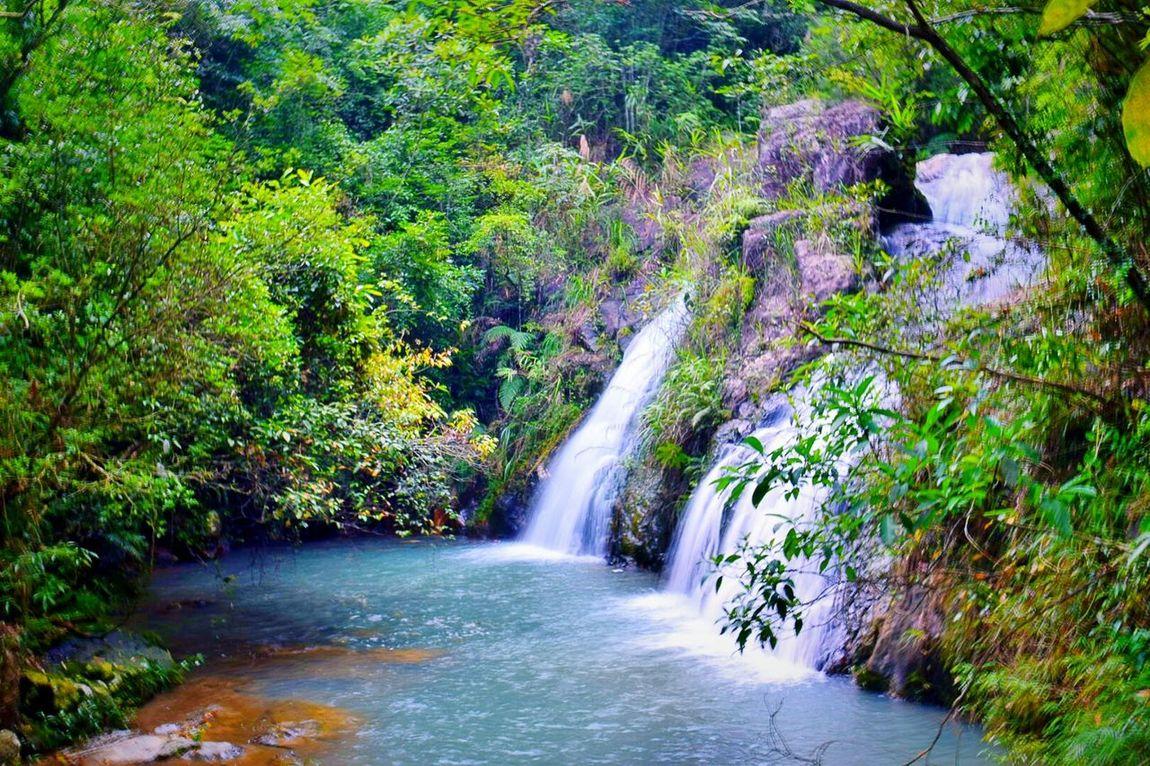 还是很喜欢这一张照片的 Flowing Water Nikon 好好生活 风光摄影 Green Environment Enjoyment Nature 旅行摄影 Scenics 梦幻 Waterfall No People Outdoors Water Scenics Waterfall Tree Motion Beauty In Nature Forest Nature Tranquil Scene Flowing Water Green Color