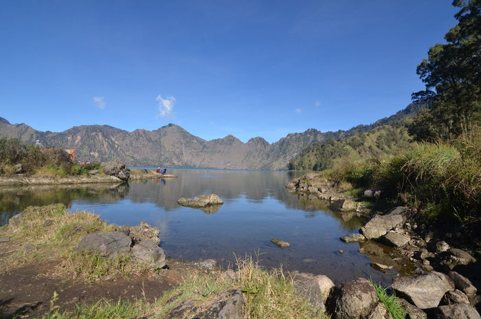 Rinjani Mountain, Lombok, Indonesia Agushariantophotography Beauty In Nature Blue Clear Sky Day Lake Landscape Mountain Mountain Range Natural Parkland Nature No People Outdoors Reflection Rinjani Mountain Scenics Segara Anak Lake Sky Tree Water