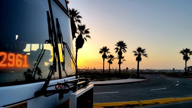 Caught a bus load of waves on International Surfing Day Surfing Sunrise Lifeisabeach
