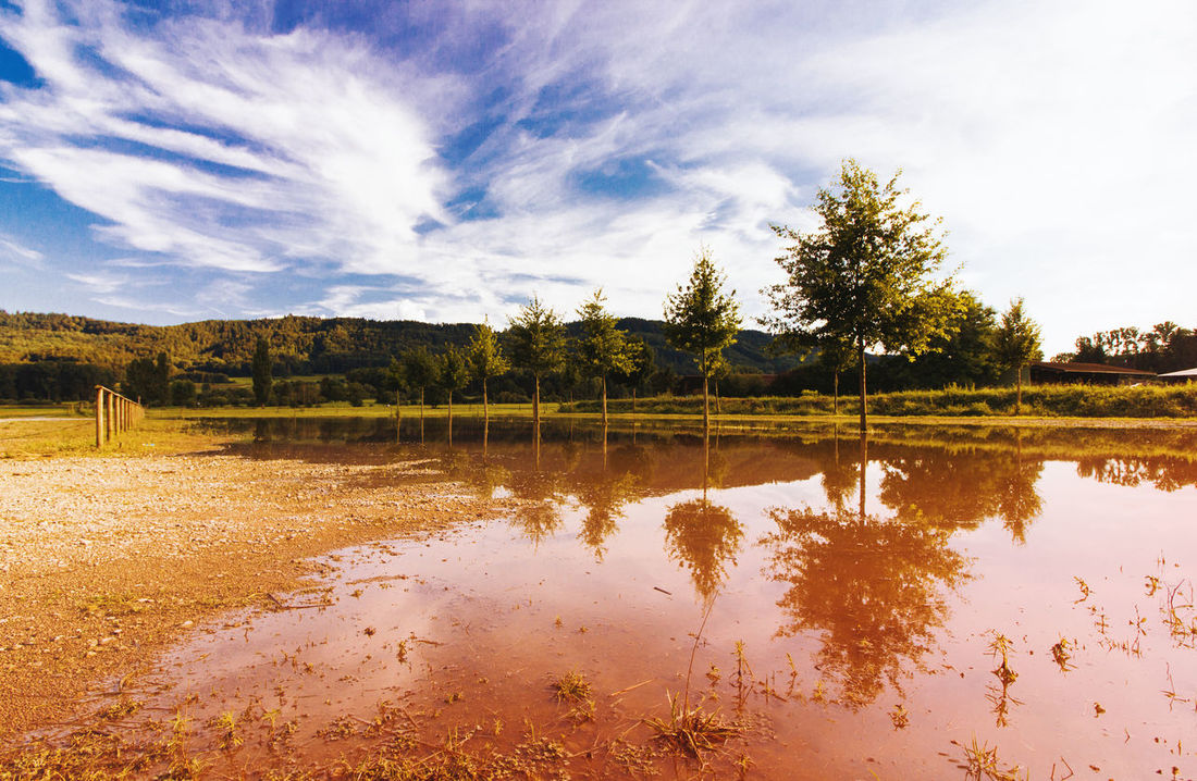 Cloudy Colorful Colorful Nature Ice Age Landscape Landscape_Collection Landscape_photography Reflection Reflection_collection Sky And Clouds Tree Tree In Water Tree_collection  Water Reflections Water_collection Flood