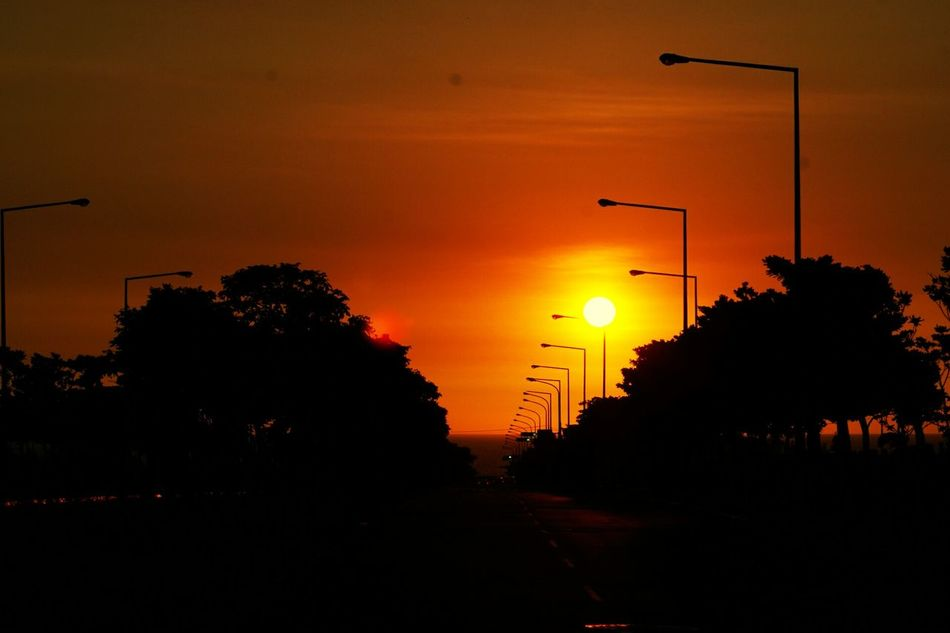 Sunset Sunset Silhouettes Golden Moment Golden Sunset Golden Slumbers Nature Photography Street Lamps 43 Golden Moments On The Way