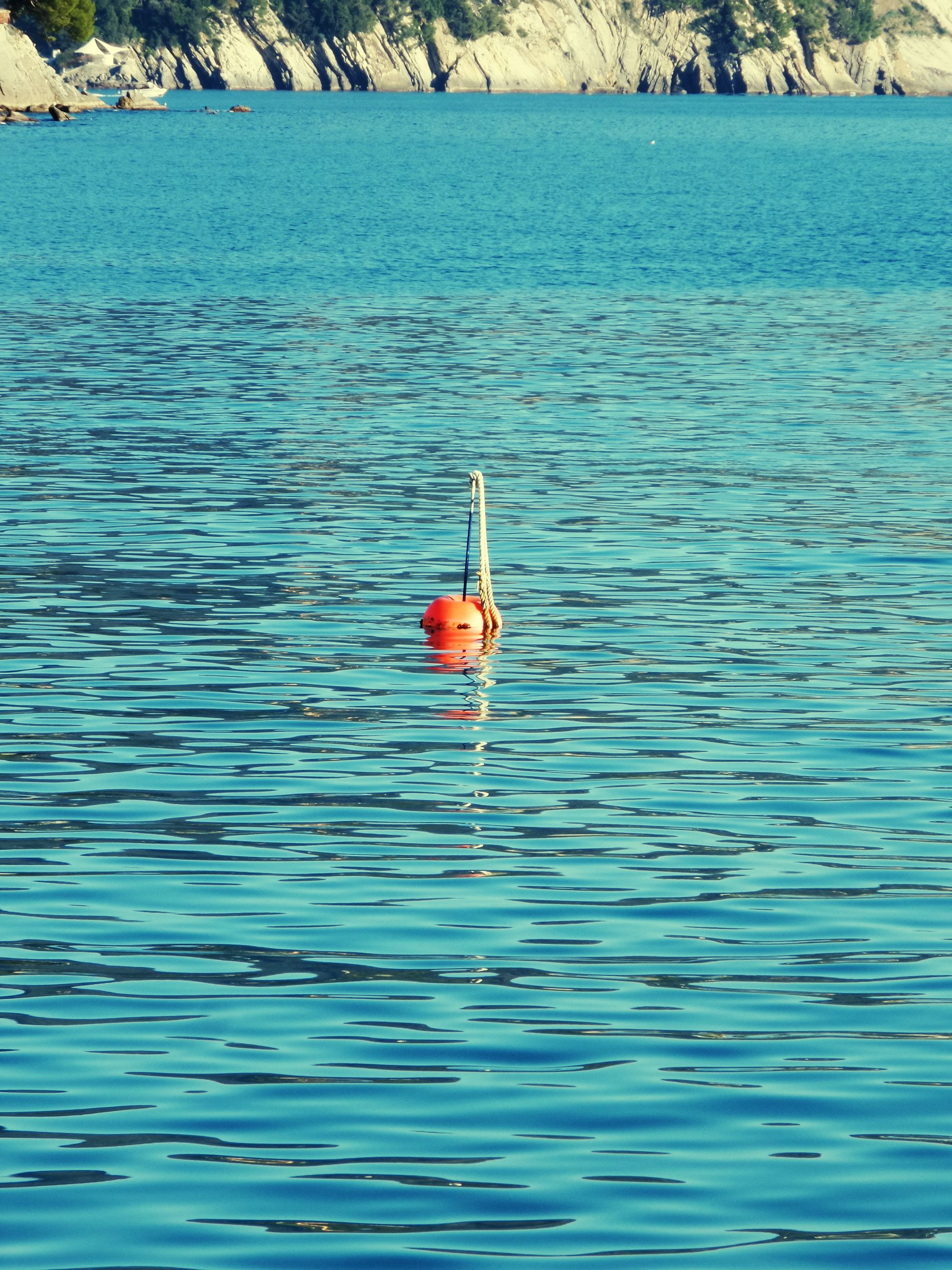 water, waterfront, swimming, rippled, lake, blue, nature, high angle view, animals in the wild, animal themes, tranquility, beauty in nature, sea, wildlife, day, floating on water, outdoors, tranquil scene, bird, scenics