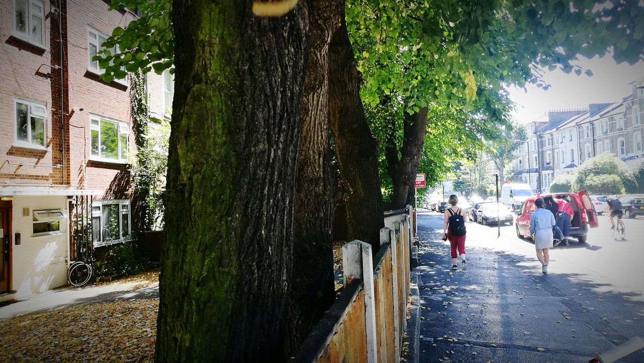 Street Photography Nature Photography London Urbanphotography Hackney London Walking Summer Hackney Downs