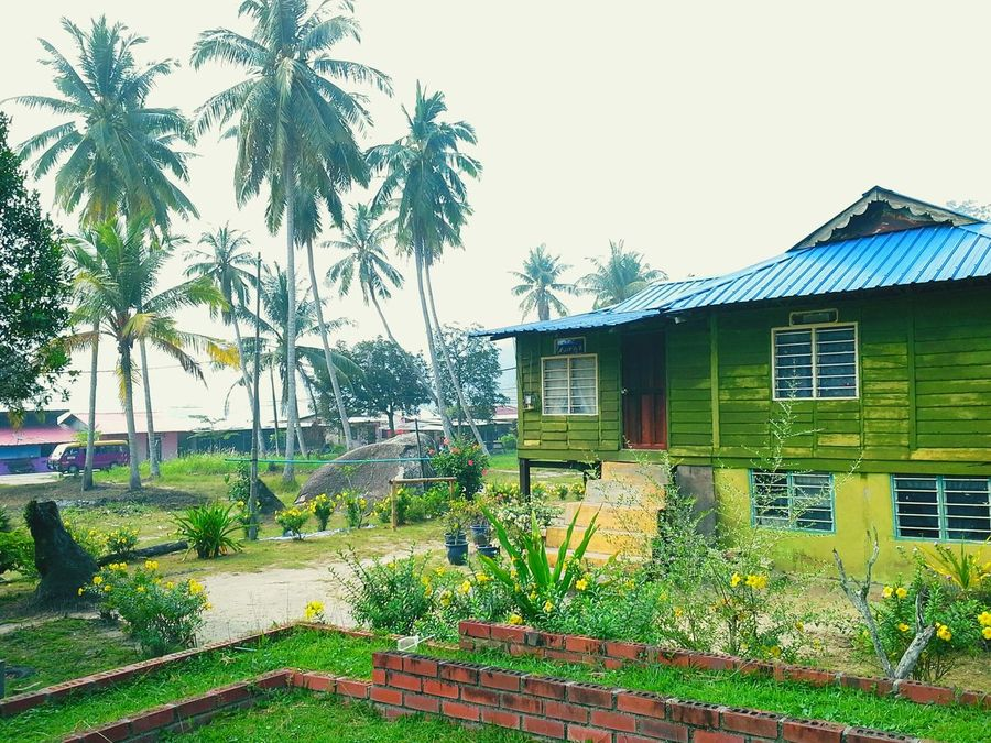 Peaceful View Green Green Green!  Ilovethisplace Vacation Time Jalanjalanperak Pangkor Island EyeEm Malaysia 2015Trip By Ismi_zuehaira