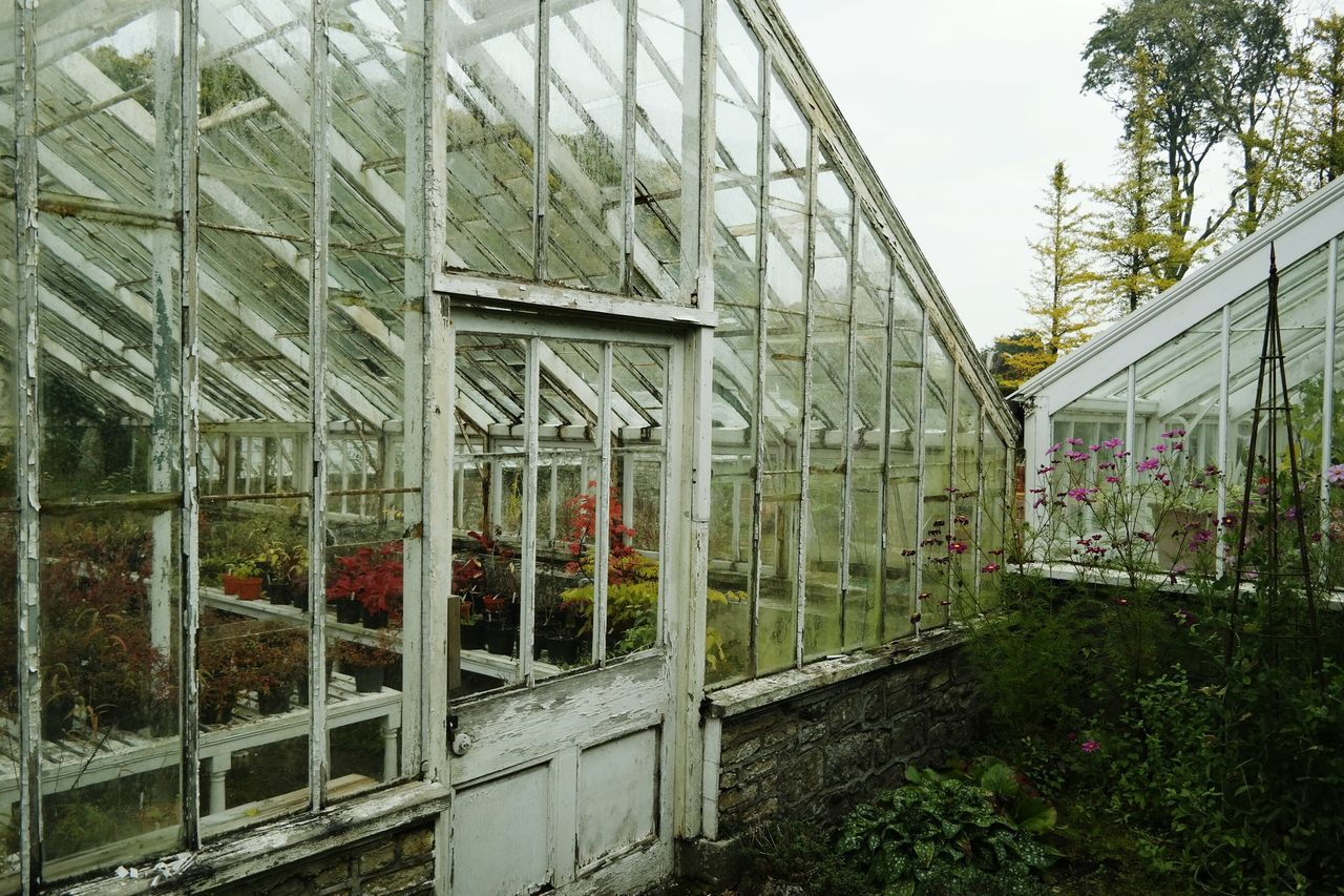 built structure, architecture, day, no people, greenhouse, plant, outdoors, building exterior, tree, plant nursery, sky, nature