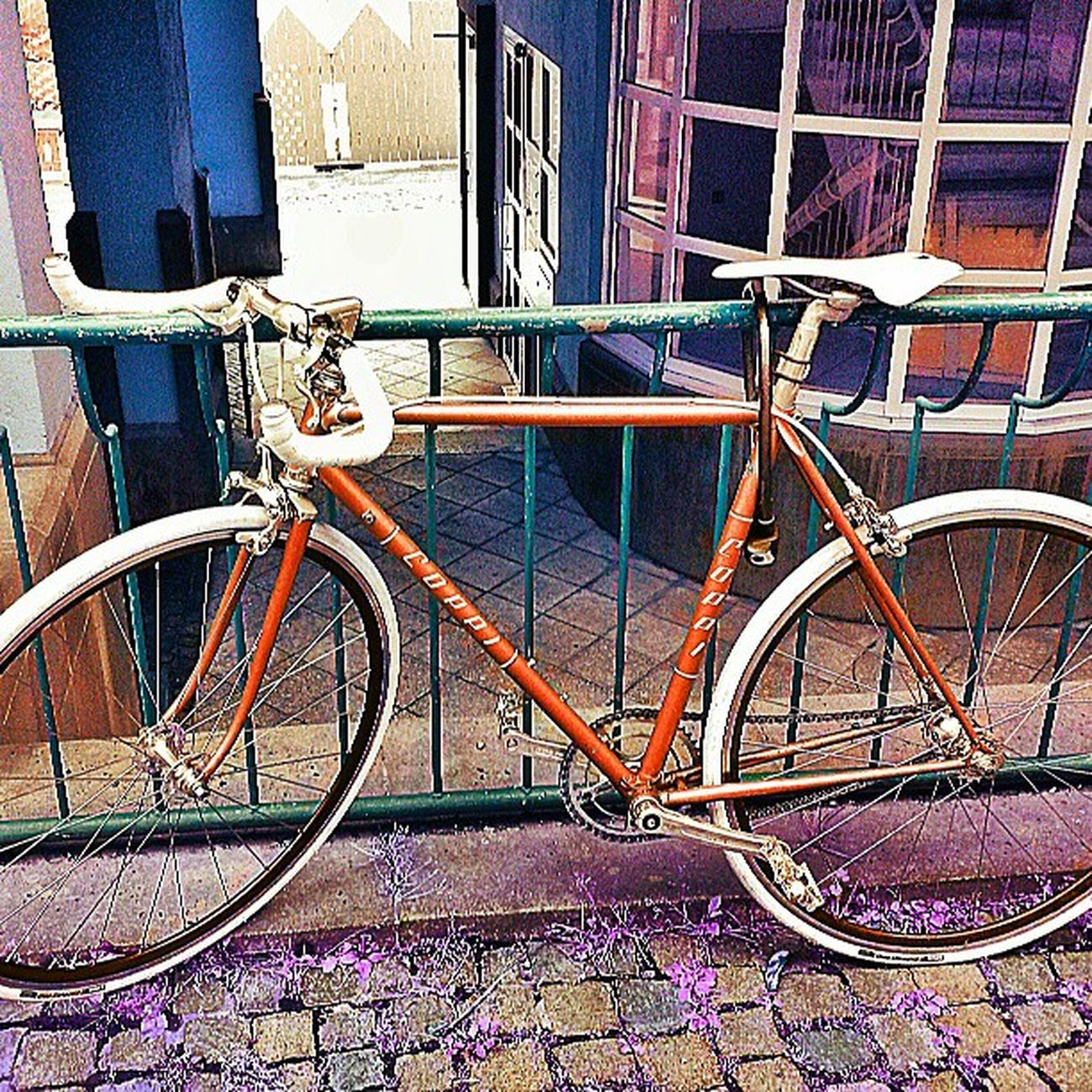 @missionbicycle Coolpic Bicycle Bikegang Vintage vintagebike 10speed classic photography instaphotography instahub statigram webstigram igdaily igser icamdaily