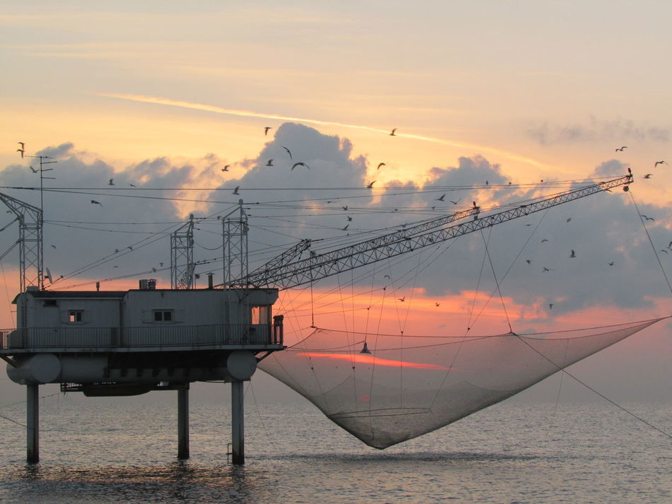 Beautiful stock photos of industrial, Bird, Built Structure, Cloud, Commercial Fishing Net