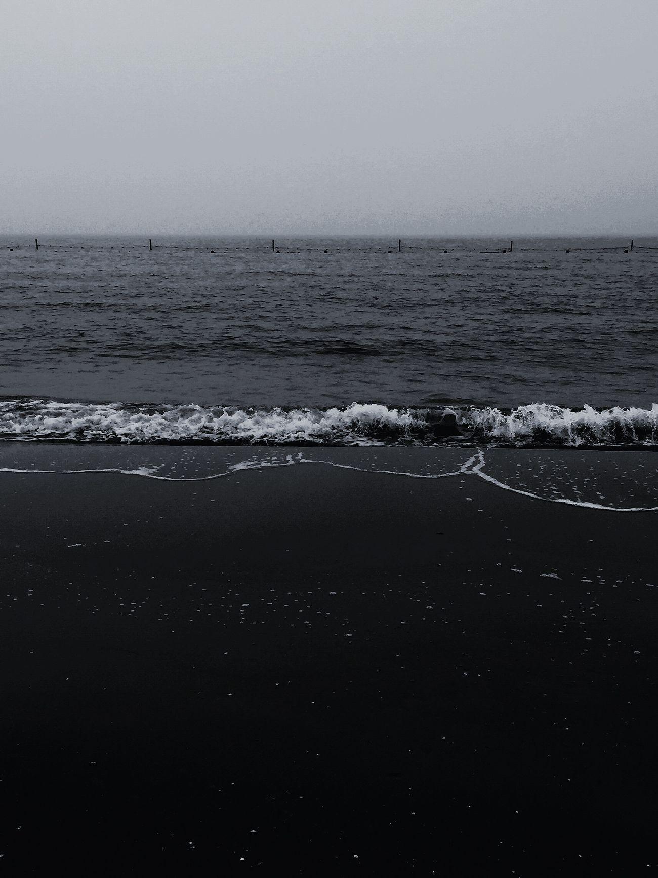 Sea Swimming Enjoying Life