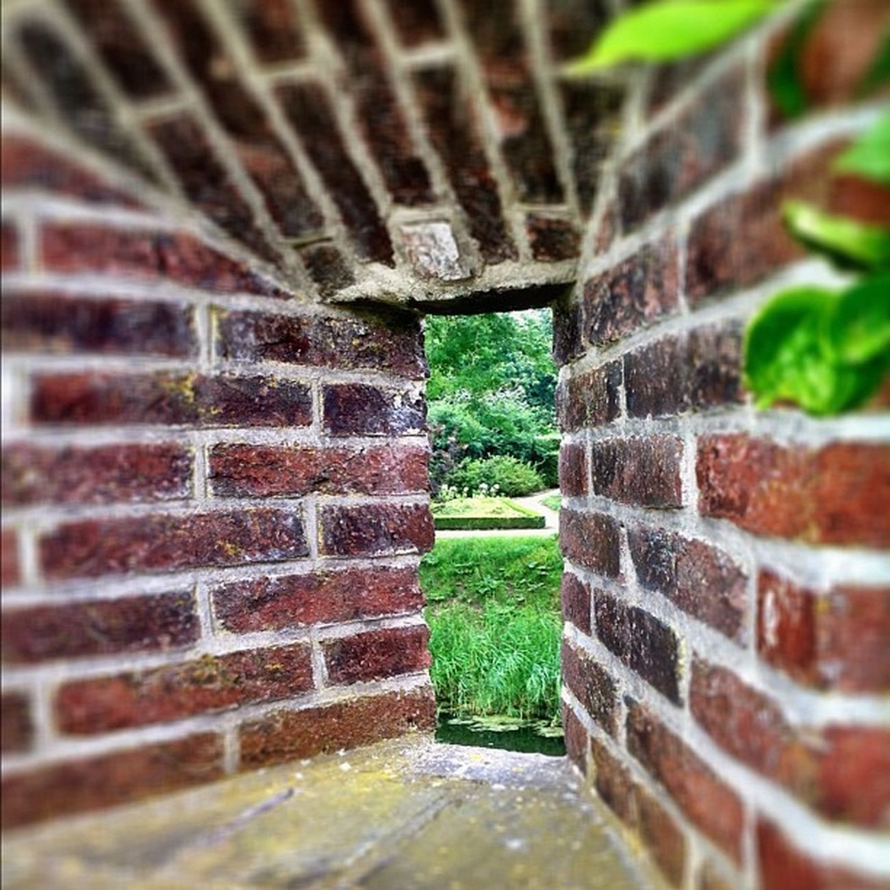 #window #windows #windowsonwindows #castle #simplistic #bricklovers #minimal #minimalist #WindowShotWednesday #minimalove #minimalistics #minimalism #instaaaaah #igville #igville_decay #texture #texturama #texturextreme #urbex #urbexphotography #urbex Instaaaaah Urbexphotography Windows Igdungeon Minimal Detailsofdecay Window Royalsnappingartists Castle Igville Minimalism Simplistic Texture Urbexjunkies Urbex Urbanexploring Minimalove Instaxplore Minimalist Texturama Urbandecay Igville_decay Texturextreme Urbexers Filthyfeeds Windowsonwindows Windowshotwednesday Bricklovers Minimalistics