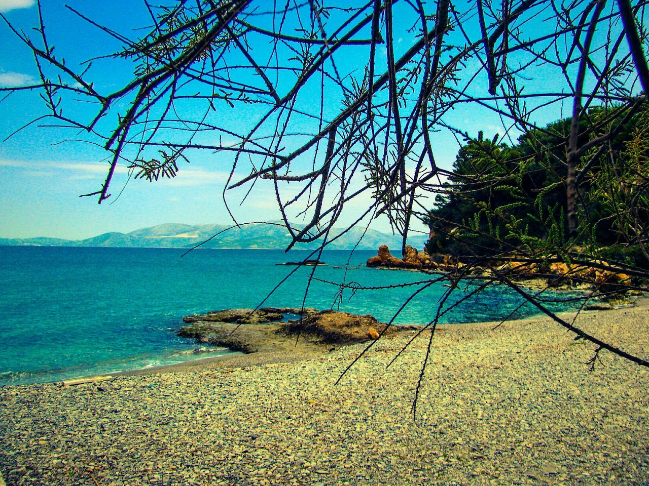 Nature Beauty In Nature Tranquility Scenics Sea Tranquil Scene Blue Seascape Beach Beach Photography Pebble Beach Pebbles The Great Outdoors - 2017 EyeEm Awards Greece Landscapes Landscape Backgrounds Shades Of Blue South Evoikos Gulf Tree Branches