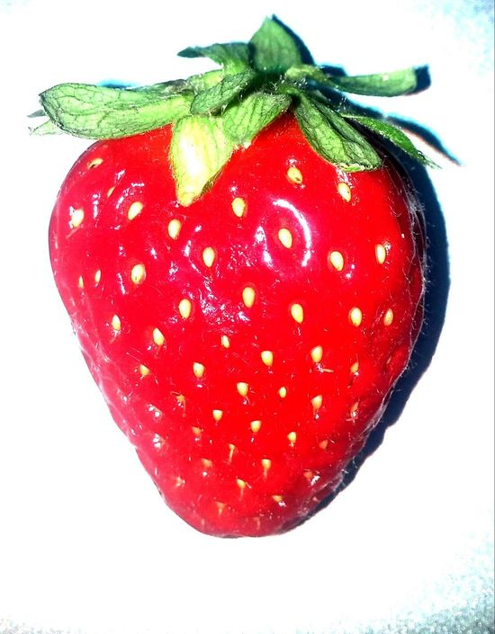 🍓strawberry Strawberry Red Food And Drink Healthy Eating Food Fruit Sweet Food Freshness