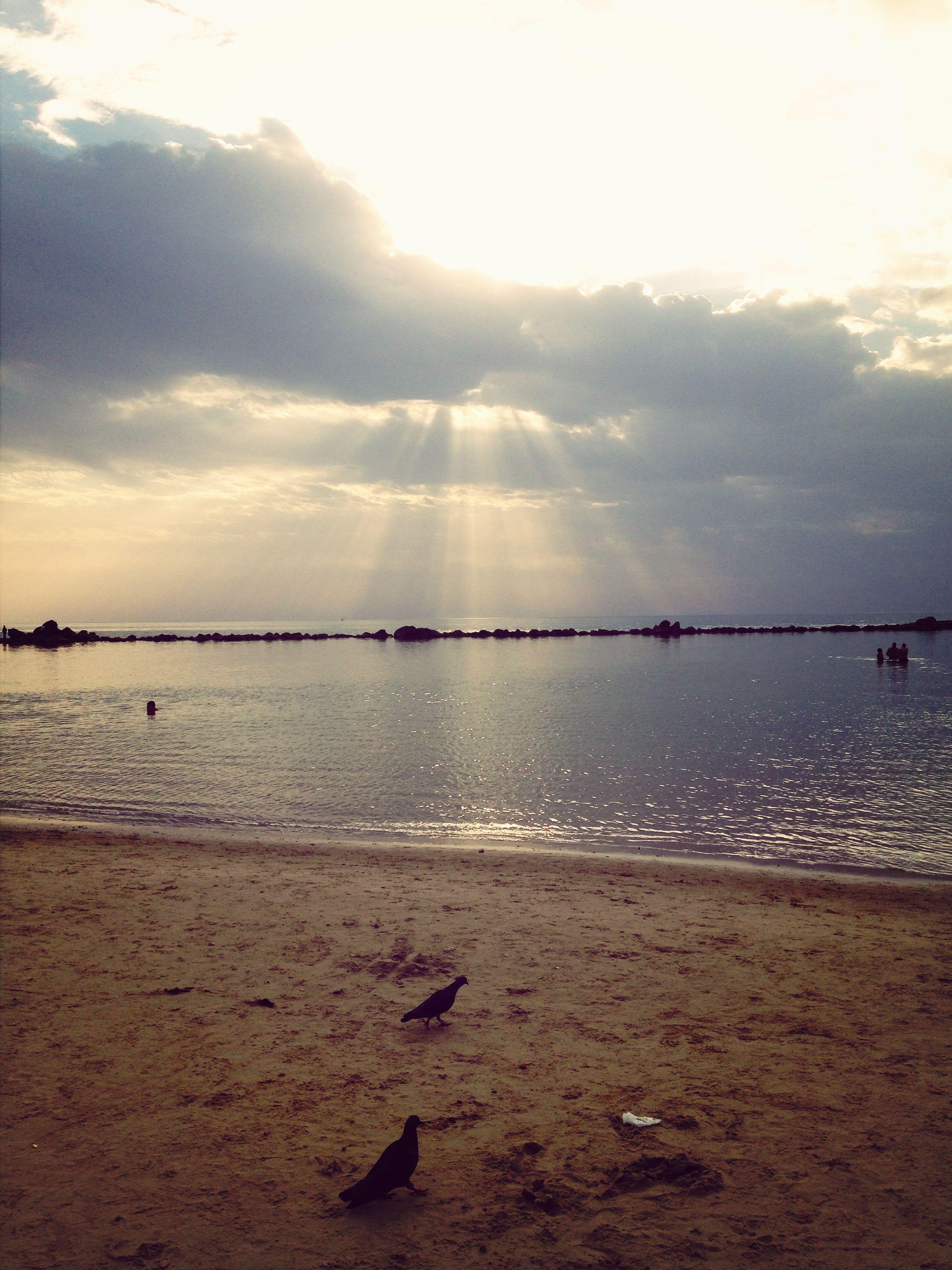 water, sea, sky, beach, scenics, tranquil scene, shore, cloud - sky, tranquility, beauty in nature, horizon over water, sunset, nature, sun, sand, reflection, idyllic, cloudy, cloud, sunlight