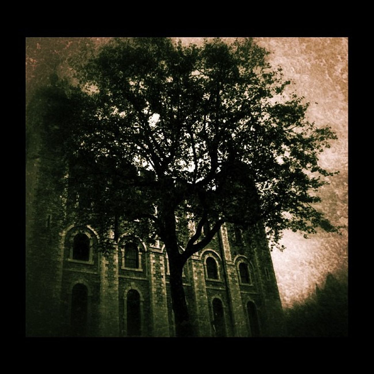 #grunge #dark #creepy #igdungeon #rsa_dark Creepy Grunge Dark Igdungeon Rsa_dark Masters_of_darkness United_by_darkness Igd_realmofthedead Ig_4every1_spooky Thehorrorgallery