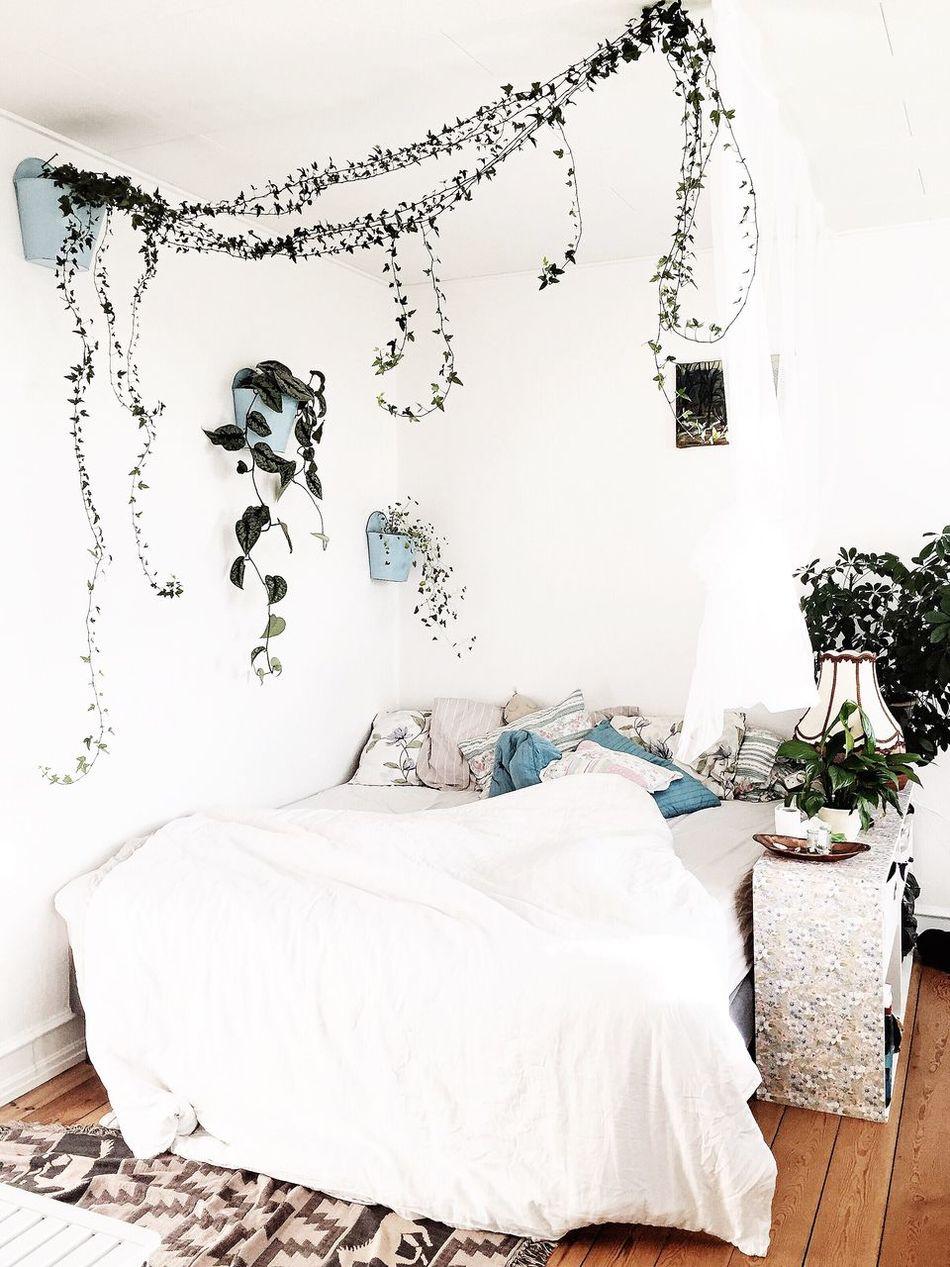 Jungle fever Bed Bedroom Home Interior Indoors  Urban Jungle Jungle Fever Plants