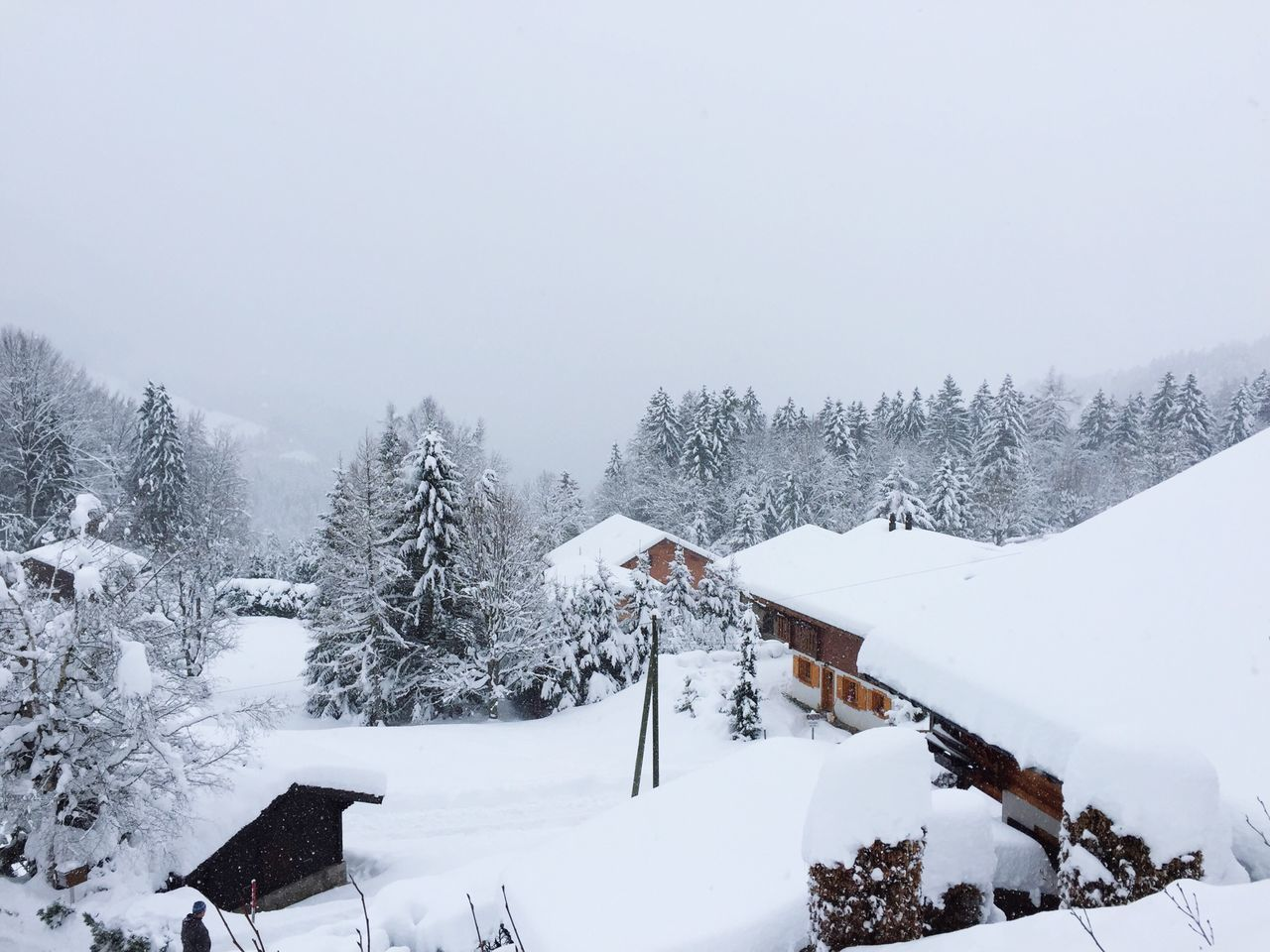 Snow Switzerland Enjoying The View ❄️