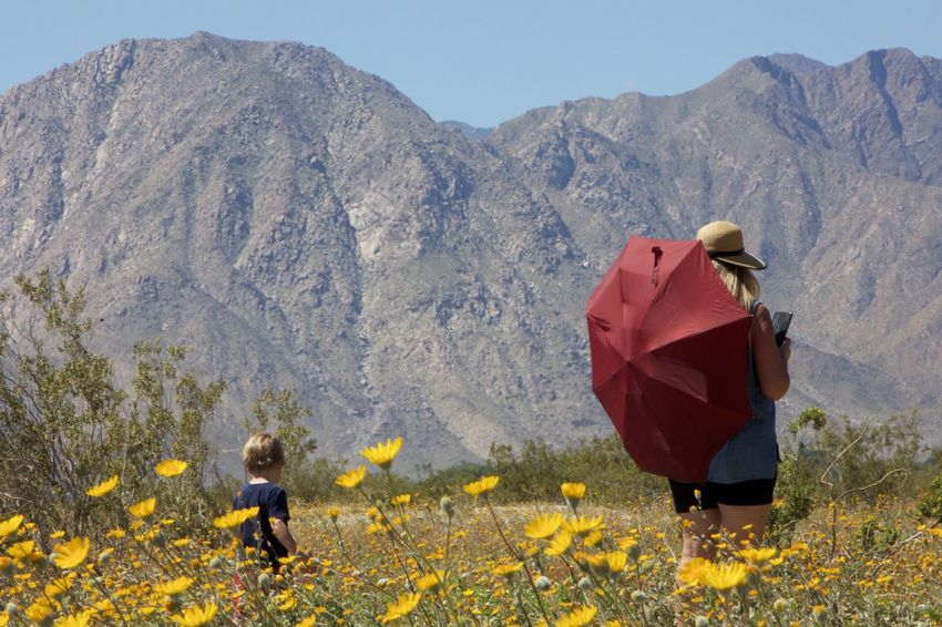 woman in red umbrella with toddler walking through the desert Adult Adventure Beauty In Nature Childhood Clear Sky Day Flower Full Length Landscape Leisure Activity Low Angle View Mountain Nature Outdoors People Real People Togetherness Two People Women Yellow Young Adult Breathing Space Paint The Town Yellow Lost In The Landscape Connected By Travel Be. Ready.