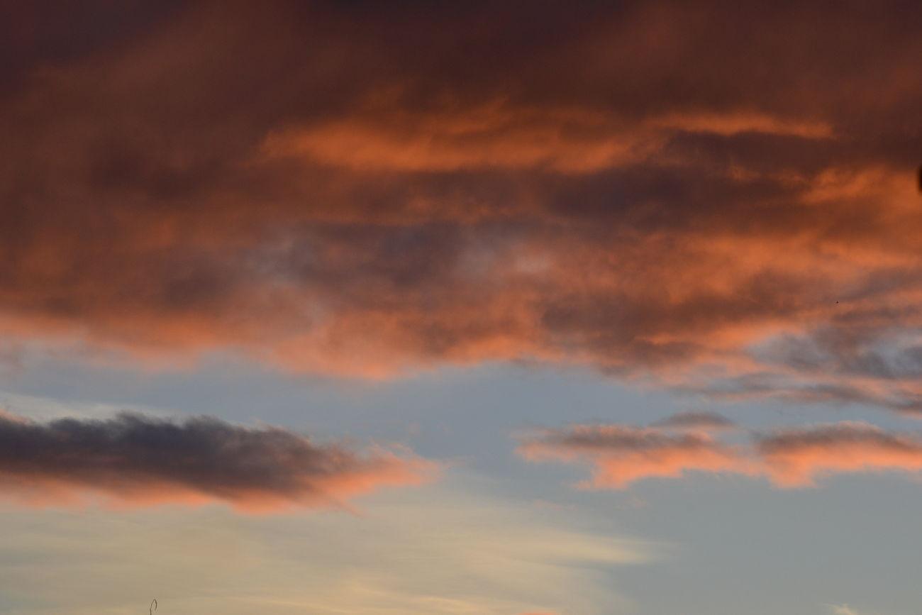 Sunset MyBackGarden