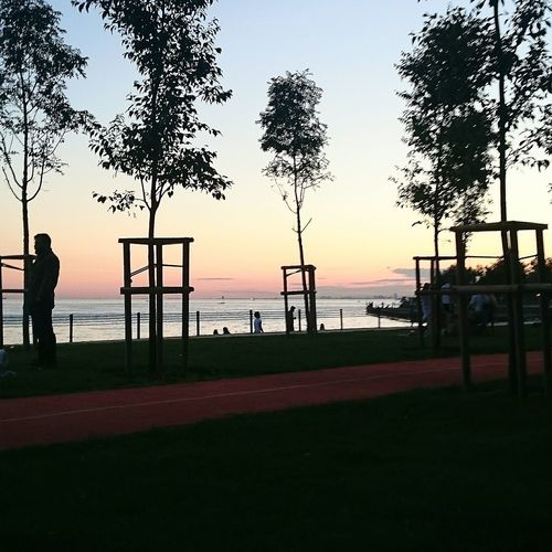Chilling Chillout Chill Mode Sunset Sunset_collection People Coast Trees Friends Istanbul Turkey Caddebostan Caddebostan Sahil Hanging Out Relaxing Enjoying Life