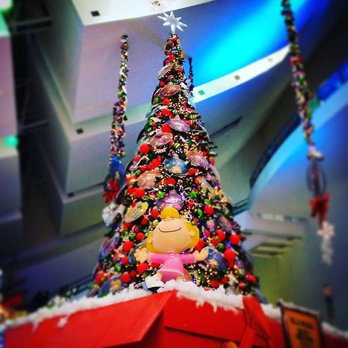 Christmas is coming! Snoopy