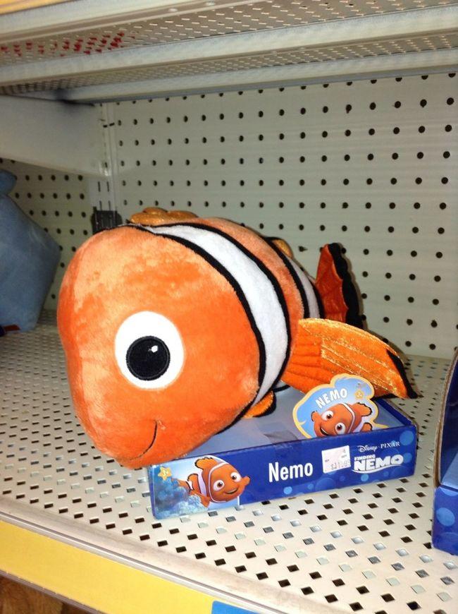 Who Likes Nemo?