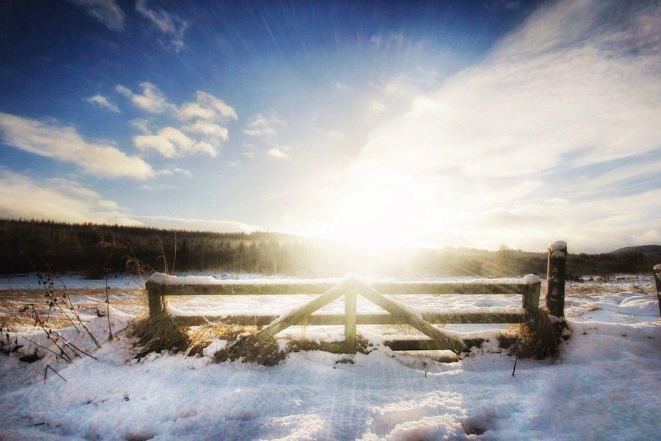 Sunny snow days Snow Snowandsun Gate Winter Cold Temperature Lens Flare Sunbeam Nature Sunlight Sun Landscape Beauty In Nature Sky Scenics Outdoors Cloud - Sky Tranquility Tranquil Scene No People Day Tree WintersceneCanon