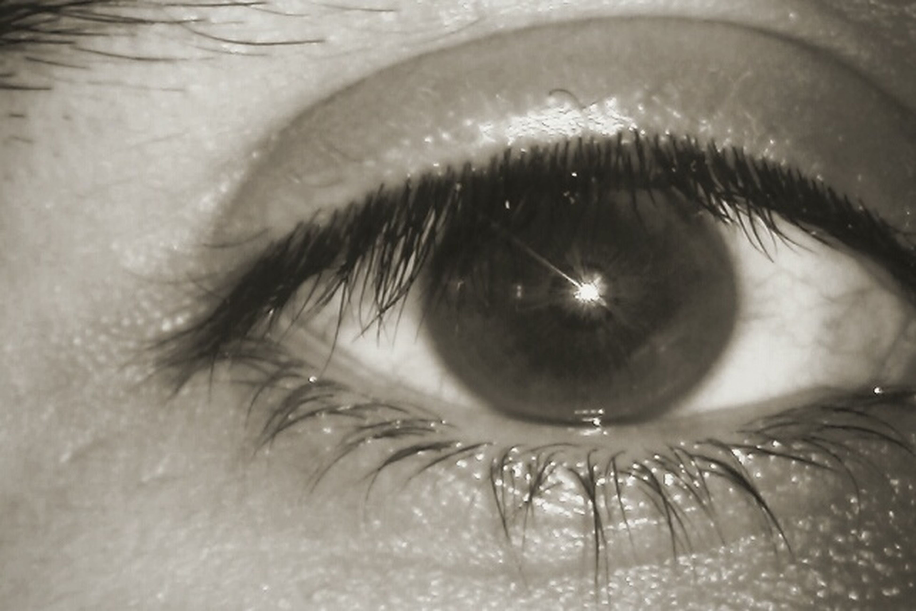human eye, close-up, part of, eyelash, eyesight, sensory perception, indoors, unrecognizable person, person, reflection, human skin, human face, lifestyles, extreme close-up, cropped, eyeball