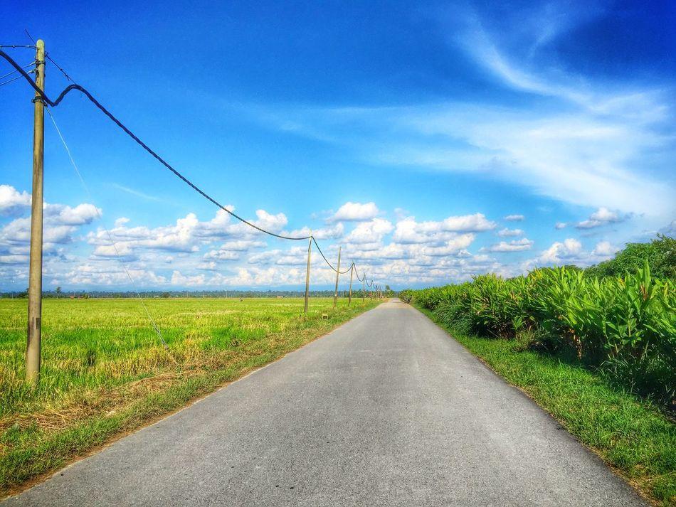Rural Scene Paddy Field Cloud - Sky Landscape Scenics EyeEmNewHere