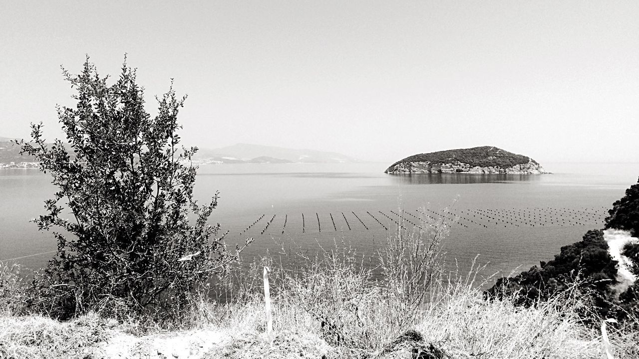 My lovely scape -watching fidonhsi from my village land Land And Sea for Bnw_friday_eyeemchallenge Spots in the Water ; Mussels Cultivation Summertime Blackandwhite Seascape Sea And Rocks Sea And Sky Nostalgia Happy People my Village Kavala