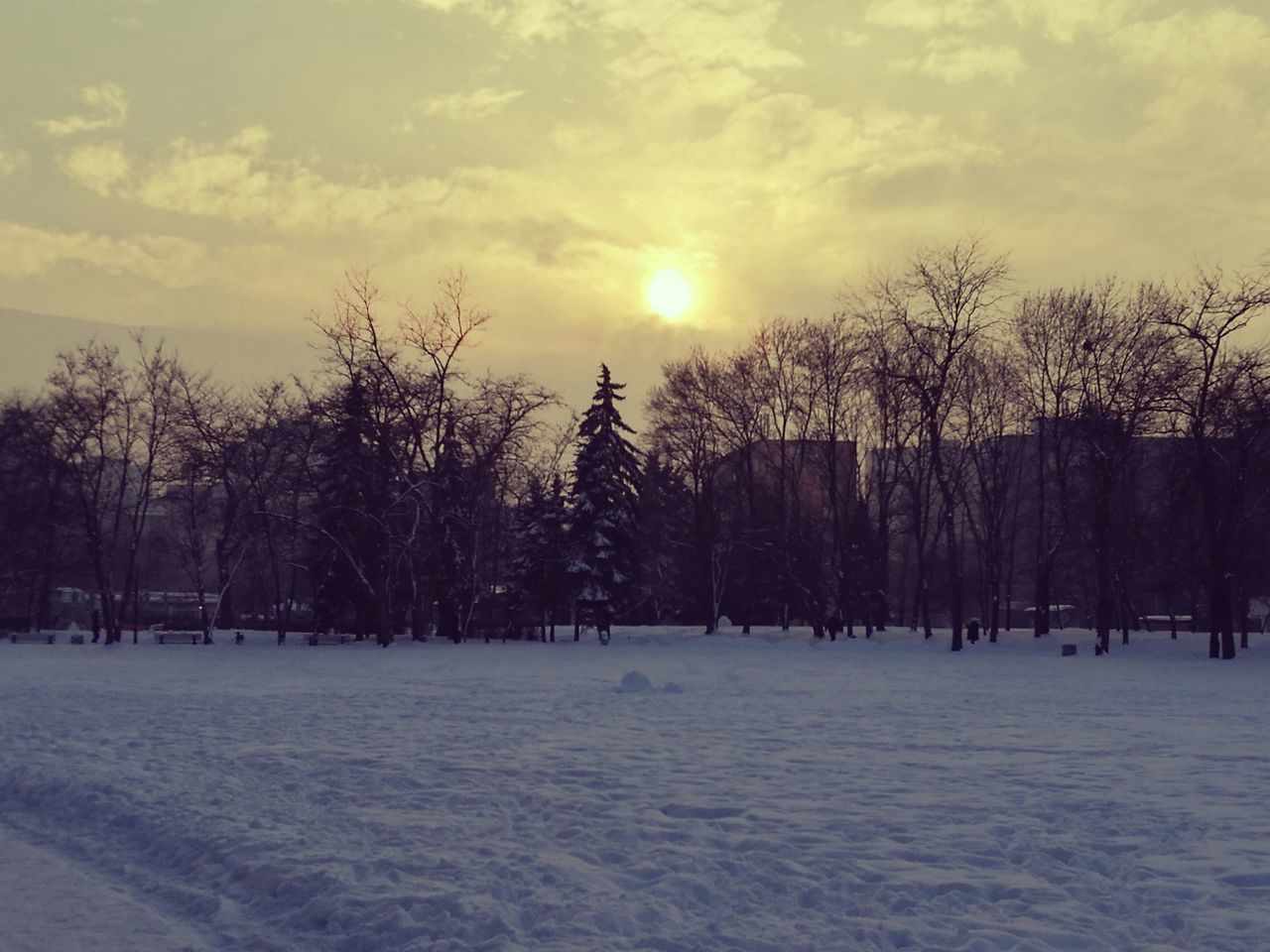 Snowy sunset Snow Winter Tree Cold Temperature Nature No People Cloud - Sky Beauty In Nature Tranquility Outdoors White Cold Winter ❄⛄ Snow ❄ Winter Illuminated Best Shots EyeEm Tree Sunset Sunset_collection Winter Sun Building Sofia, Bulgaria