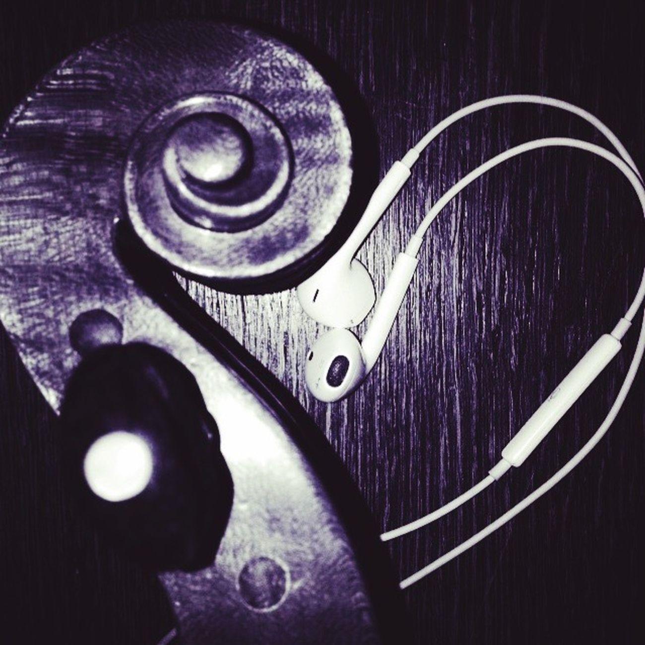 Violi Music