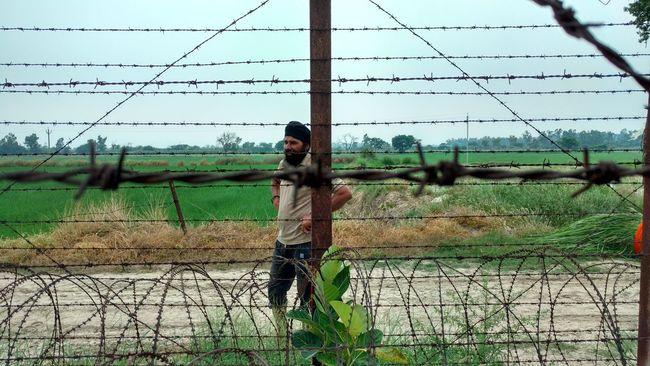Agriculture Borderline Chainlink Fence Fence Field Indo-pak Border Outdoors Rural Scene Summer Zeroline