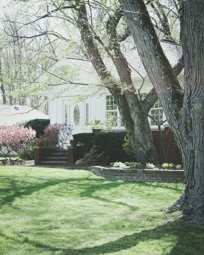 Spring is here Traditional Residential  Mid Century Architecture Spring Flowers