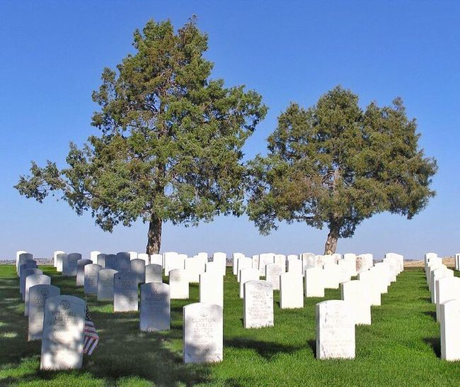 Cluster's Last Stand Custer State Park Little Big Horn Wild West American History Tombstone Soldier Soldiers Graveyard Attack Tree Sky Blue Sky Memorial Montana Cavalry Battle Battlefield Solumn Quiet Places Quiet Peace Peaceful