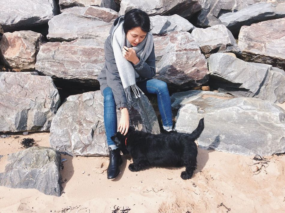 doggy Togetherness Sitting Outdoors Domestic Animals One Woman Only Dog Scottie Beach Scotland Friendship