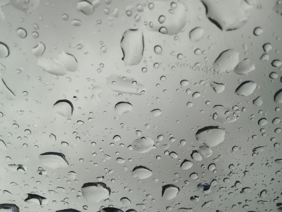 Watet Droplets Raindrops Close-up PhonePhotography Phoneography