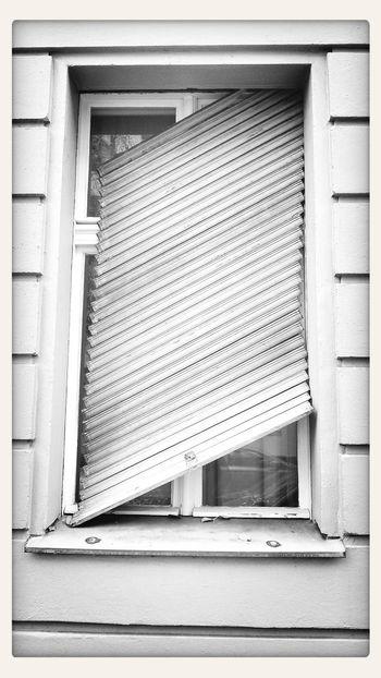 Dumm gelaufen ;-) Rollladen Monochrome Blackandwhite