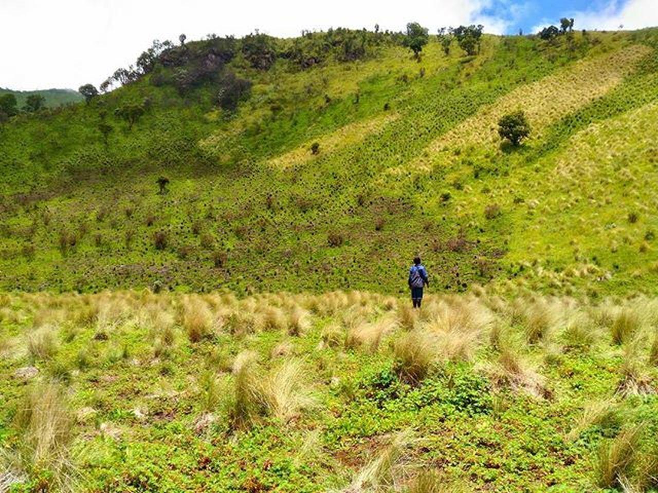 Sabanamu benar-benar istimeewa !!! . . Loc : Sabana II , Gunung Merbabu , Jawa Tengah . Pendakiindonesia Id_pendaki Indonesiakeren Exploregunung Pendakikusam Gunungindonesia Explorependaki Merbabu Jawatengah
