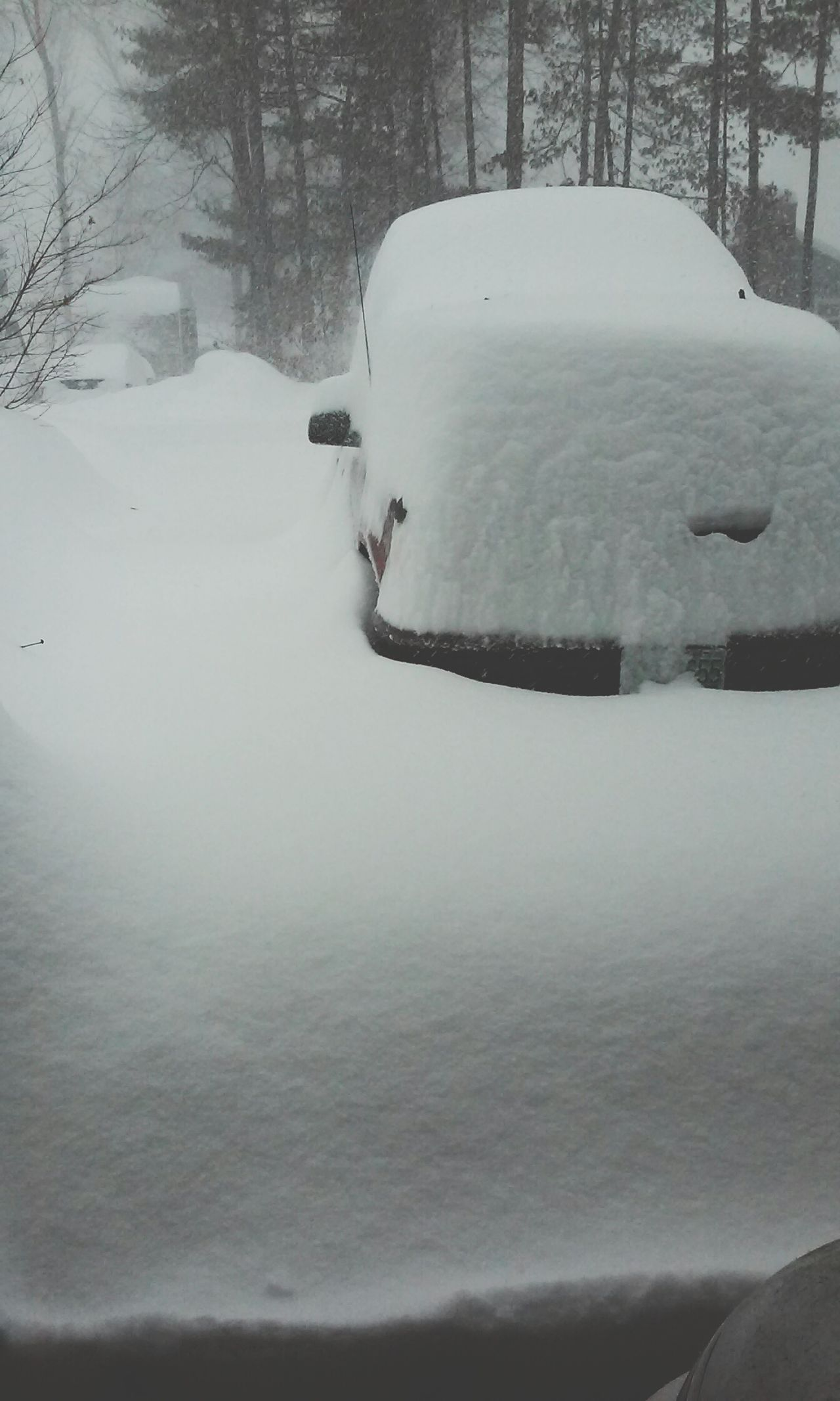 Blizzard 2015 10:00 this morning, 25 inches and not half way through the storm yet