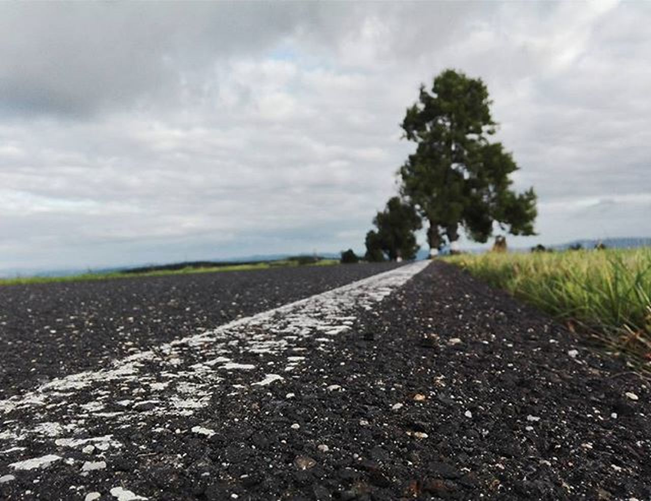 road, cloud - sky, the way forward, sky, outdoors, day, nature, no people, landscape, transportation, asphalt, tree, tranquility, rural scene, scenics, close-up